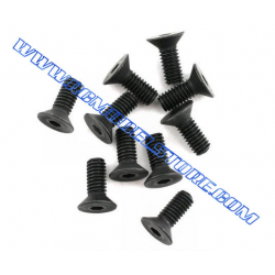 BMT.0155 Flat Head Screw 3x6mm (10pcs)