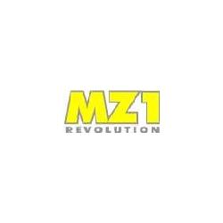 MZ188 Seeger puleggia Z31 (pz.10)