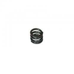 G1599 Edam Push-Type Clutch Spring 18KGF (Pro KIT)