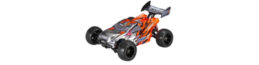 Rc Car kits 1/12 & 1/16
